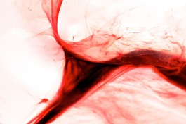 twisted uterus jen lewis